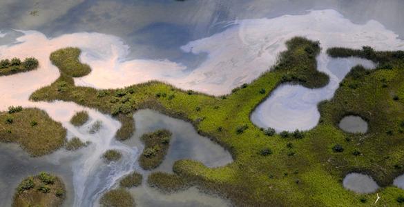 Фо�ог�а�ии заг�язнения залива Глобали��