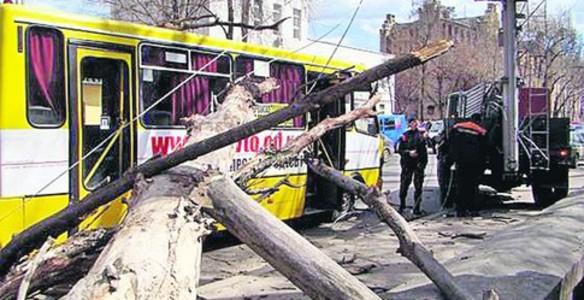 В Одессе упало дерево на маршрутку В Одессе, прямо в центре города упало дерево на маршрутное такси с пассажирами.